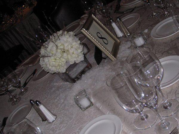 Tmx 1329154327059 IMG1204 Fort Worth wedding florist