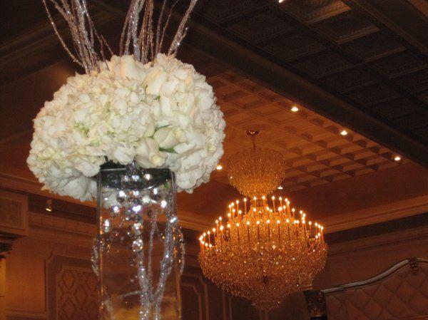 Tmx 1329154471684 IMG1215 Fort Worth wedding florist