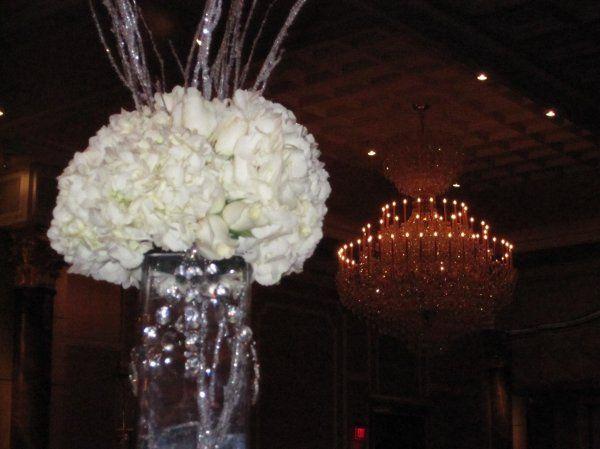 Tmx 1329154499387 IMG1218 Fort Worth wedding florist