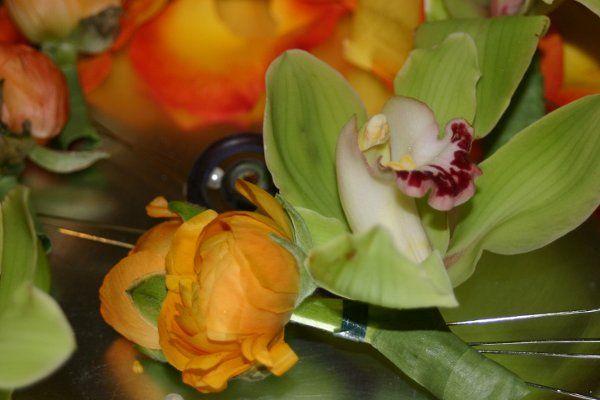 Tmx 1329159578965 IMG0993 Fort Worth wedding florist