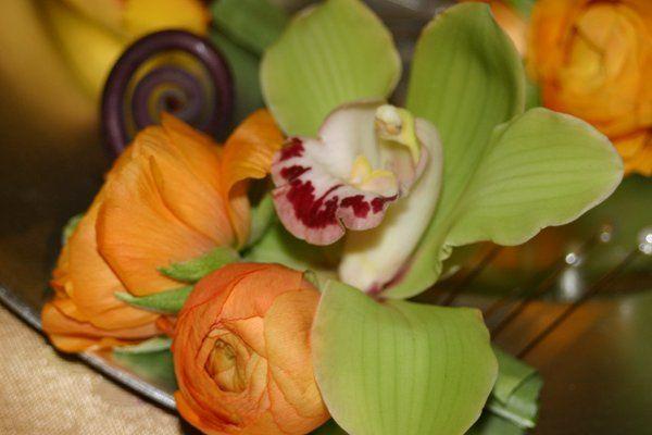 Tmx 1329159593340 IMG0994 Fort Worth wedding florist