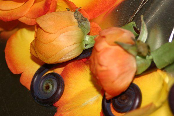 Tmx 1329159623340 IMG0996 Fort Worth wedding florist