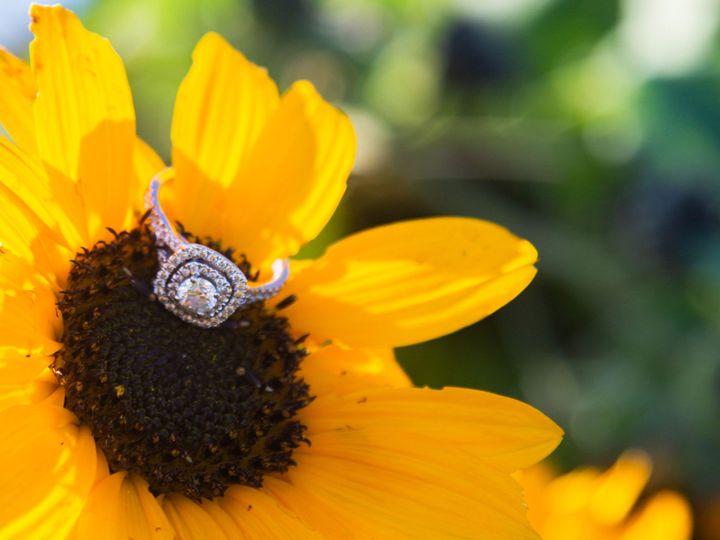 Tmx Kffringonflower 51 686721 157834857714498 Maple Park, IL wedding venue