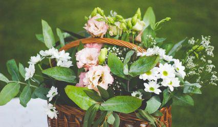 Weddings & Events by Adrianna 2