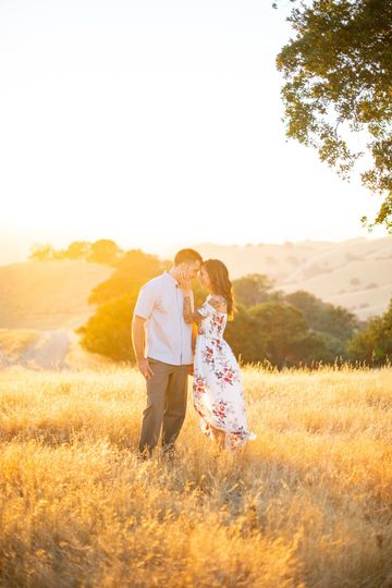 Meadow scenery