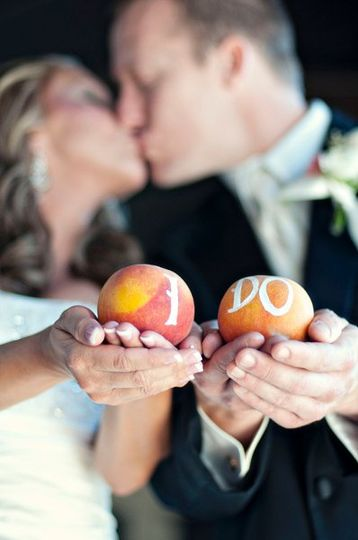 Megan K Events Photos Wedding Planning Pictures Florida