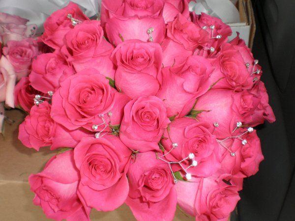 Tmx 1309901401726 FerraroBouqBride1 Lockport, NY wedding florist