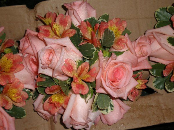 Tmx 1309901478585 HarringtonBouqBmaids Lockport, NY wedding florist