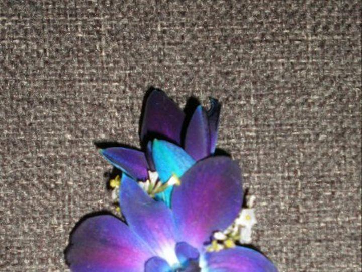 Tmx 1309901568210 NemetiBoutGM Lockport, NY wedding florist