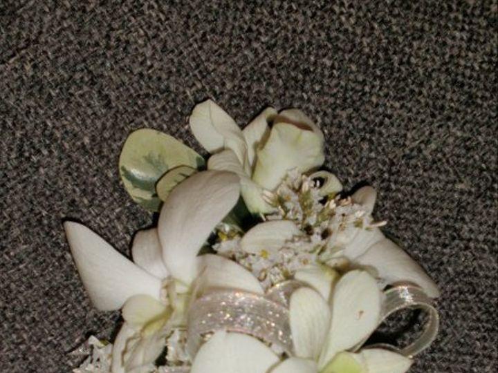 Tmx 1309901608366 NemetiCorsageMoms Lockport, NY wedding florist