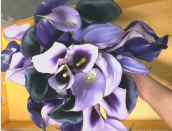 Tmx 1309901803538 SensorBouqBride Lockport, NY wedding florist