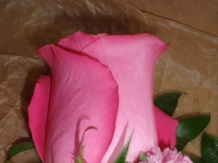 Tmx 1309901877991 SurianiBoutGroom Lockport, NY wedding florist