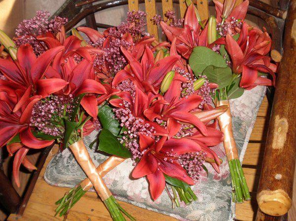 Tmx 1309901916726 WlostowskiBouqBmaids2 Lockport, NY wedding florist
