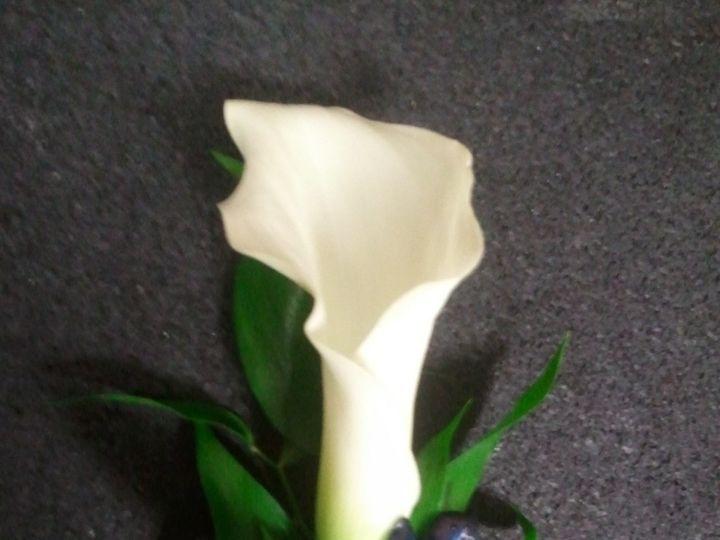 Tmx 1366404771876 Hehrboutgroom Lockport, NY wedding florist
