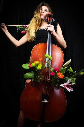 cello flowers