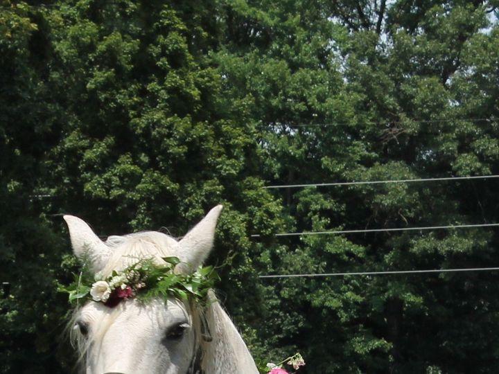 Tmx Bocco 51 1057821 1564400267 Grand Rapids, MI wedding florist