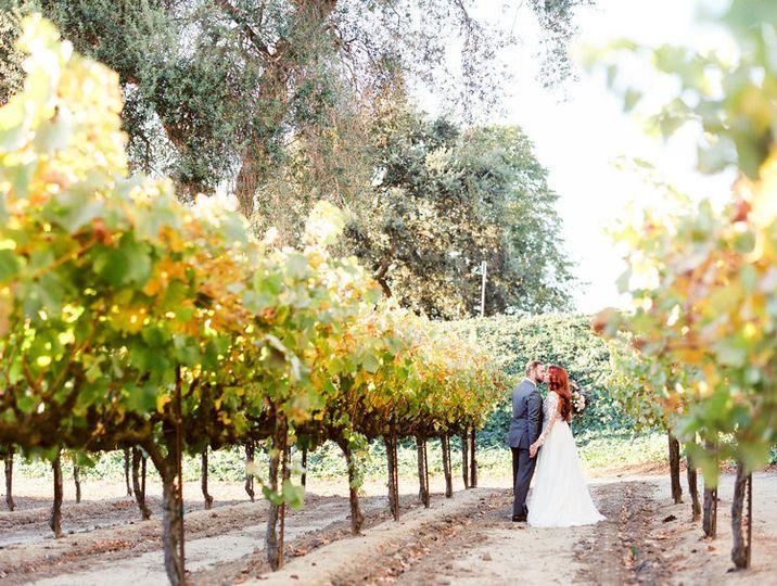 Scribner Bend Vineyards