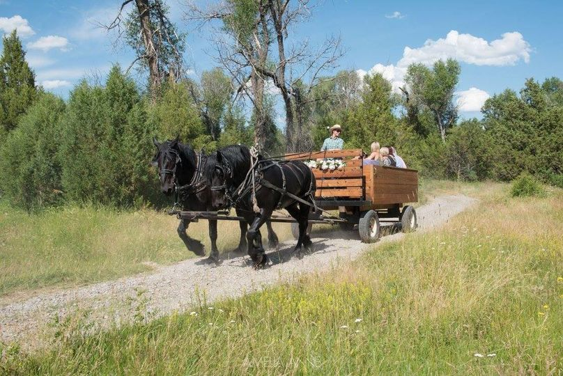 Horse drawn carriage to ceremony site