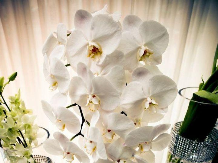 Tmx 1372242845268 25081010151815059745607486731213n Denville, New Jersey wedding florist