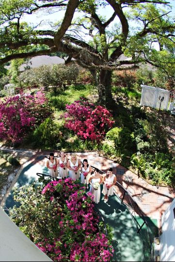 "View of side garden and ""La Belle Isabel"" live oak"