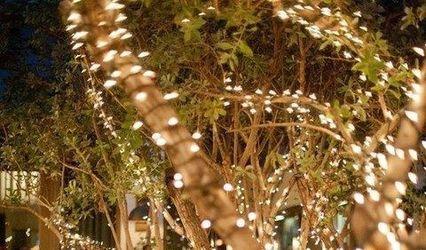 Illuminations Holiday Lighting 1