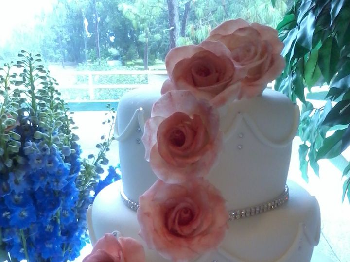 Tmx 1444761232264 Coral The Best Jacksonville wedding cake
