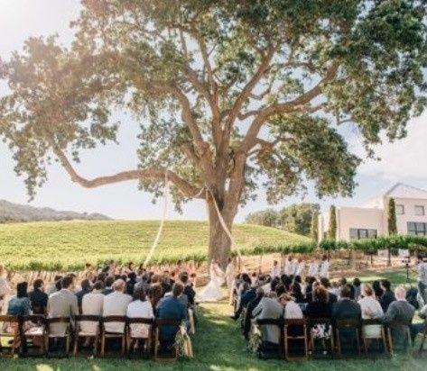 Tmx 1491672216540 Fullsizeoutput8679 Paso Robles, CA wedding venue