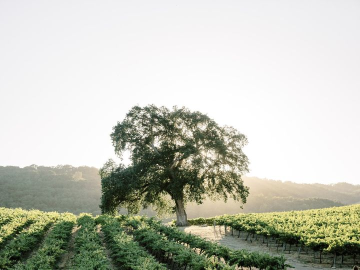 Tmx Katie And Morgan Hammerskyvineyards Wedding Andrew And Ada Photography 2019 1118 51 166031 157991163987598 Paso Robles, CA wedding venue