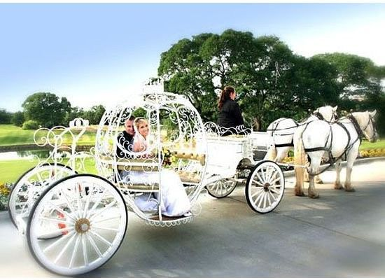 Cinderella Carriage, Catte Verde, Lincoln, CA