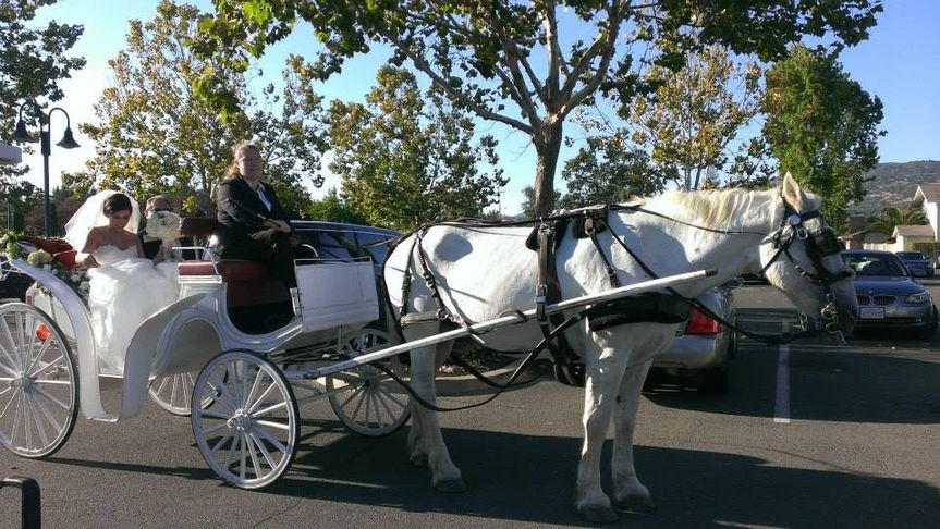 Victoria carriage, Turkey Creek Country Club, Lincoln, CA