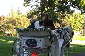 Vintage Carriage Company and Baraat Horse Service