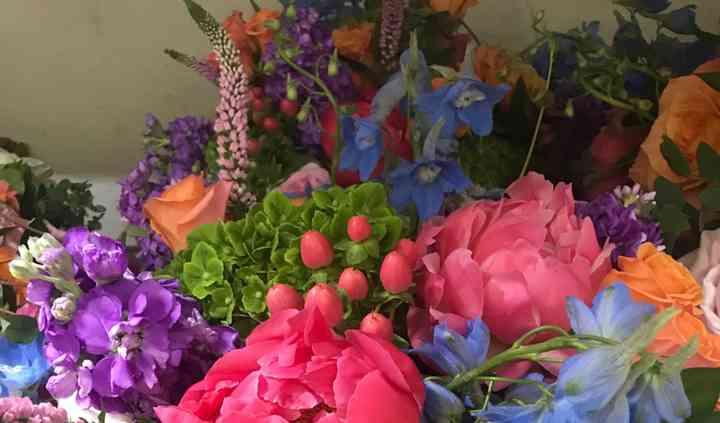 Pink Petunia Designs