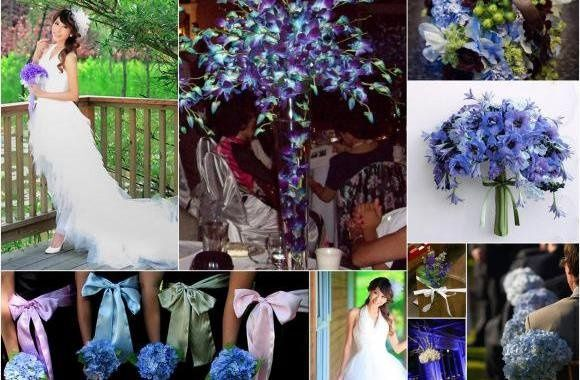 blueorchid