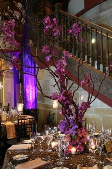 manzanita tree arrangement