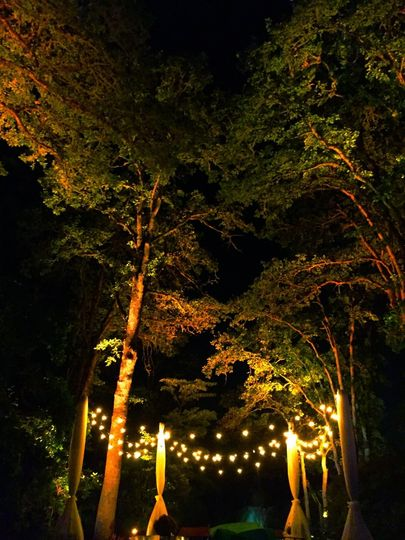 A wonderful oasis in the forest!  Lovely lounge with layers of cafe strings, and a perfectly uplit...