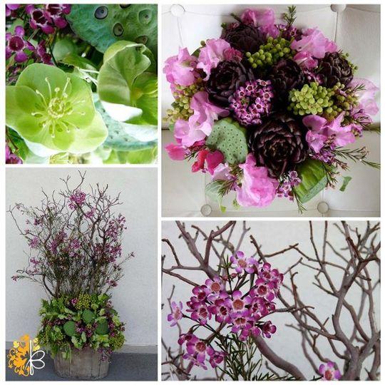 GardenRomance