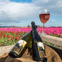 Celebrate the Tulip Festival