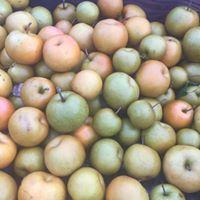 Estate fruit