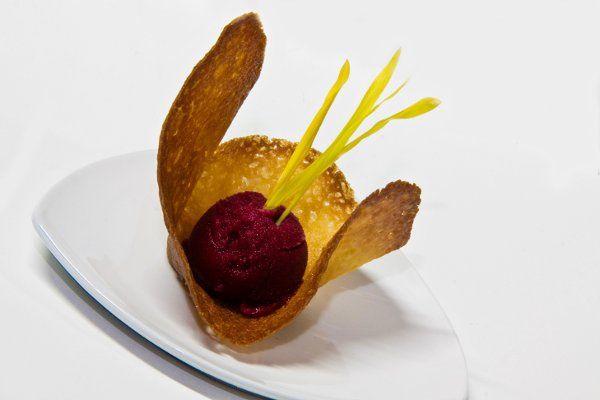 FoodPomegranateSorbet