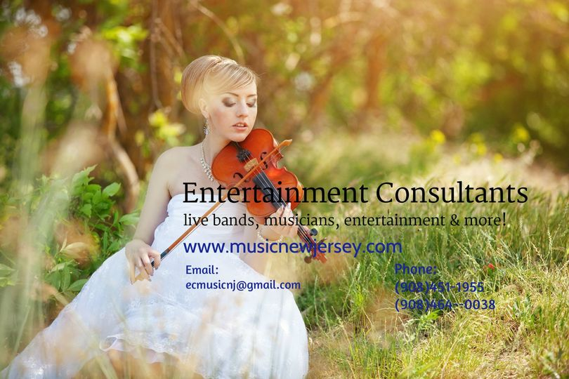 Classical Musicians for your Wedding We have acoustic and electric violinists for your wedding...