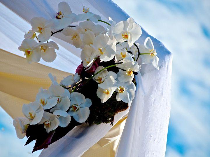 Tmx 1485280560720 Dsc3336 Moraga, California wedding officiant