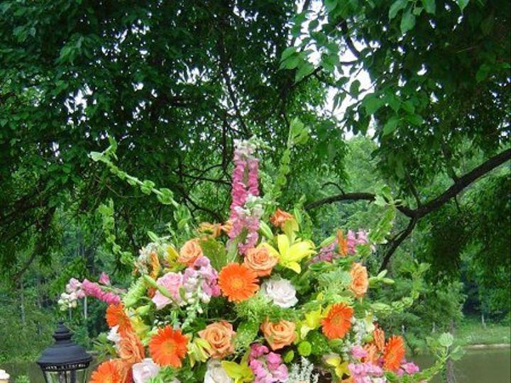 Tmx 1240261761031 DSC03489 Annapolis, Maryland wedding florist