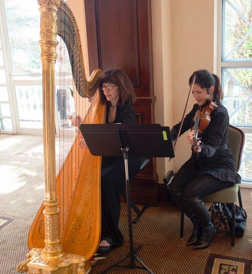 Harp and violin duo
