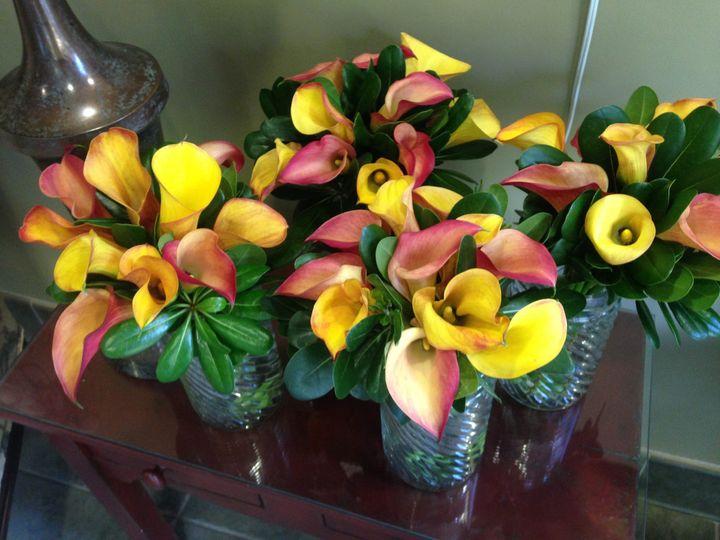 Tmx 1503603326894 Calla Lilies Asheville, North Carolina wedding florist