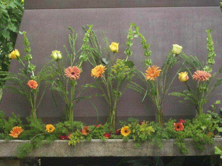Tmx 1503603575477 Imgp2187 Asheville, North Carolina wedding florist