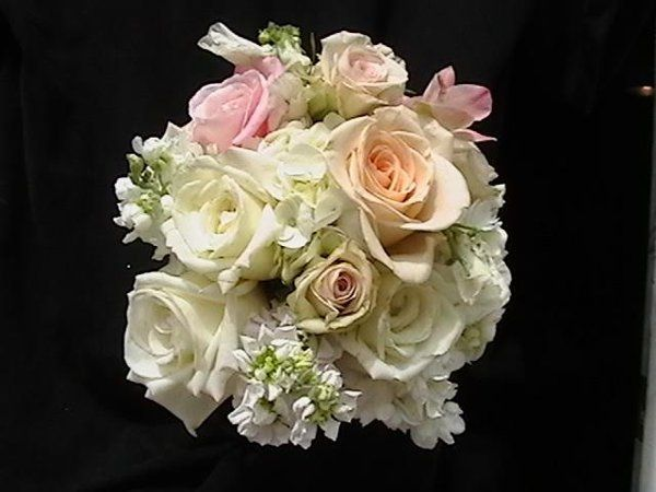 Beautiful bridal bouquet with pink and peach roses, white hydrangeas and stock.  $85