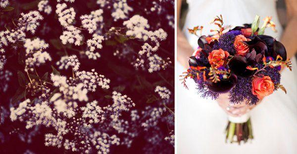 Tmx 1263958238688 04 Winston Salem wedding photography