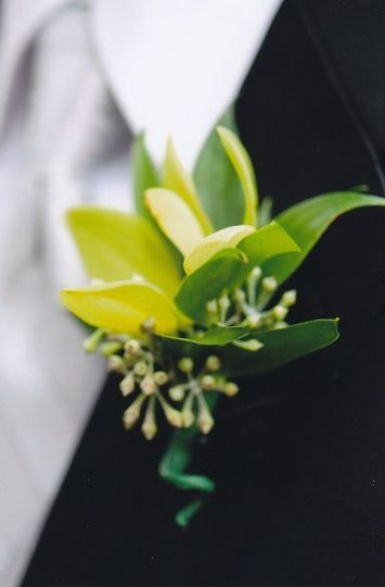 Groom bout with cymbid orchid