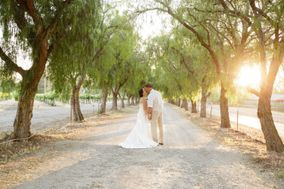 Lady of Light Photography
