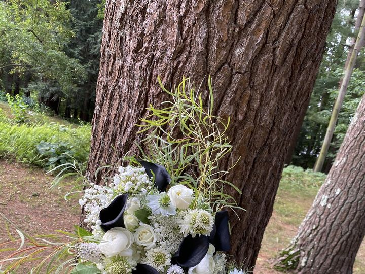 Tmx Bridal Bouquet 51 1897631 159777101685787 North Hampton, NH wedding florist